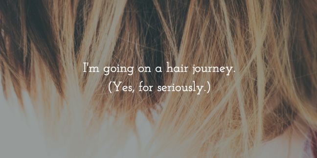 I'm going on a hair journey. Dyed hair. What it's like to dye your hair.